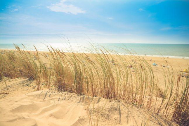 sea-beach-sand-sun